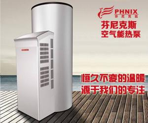 芬尼克斯空气泵